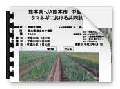 H28年元肥効果タマネギ_01